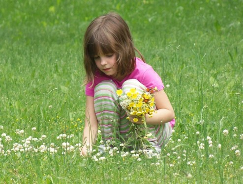 Top Books for Young Environmentalists